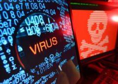 What is computer virus? Dangerous inhabitants of digital world