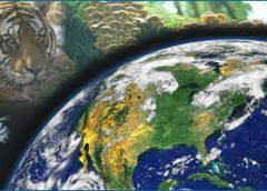 Планета Земля як середовище життя організмів: виникнення життя на Землі