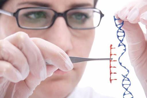 Що таке генна інженерія (генетична інженерія): цікаві факти