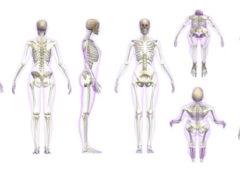 Цікаві факти про людину та її тіло