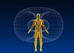 Який вплив магнітного поля на життя та здоров'я людини?